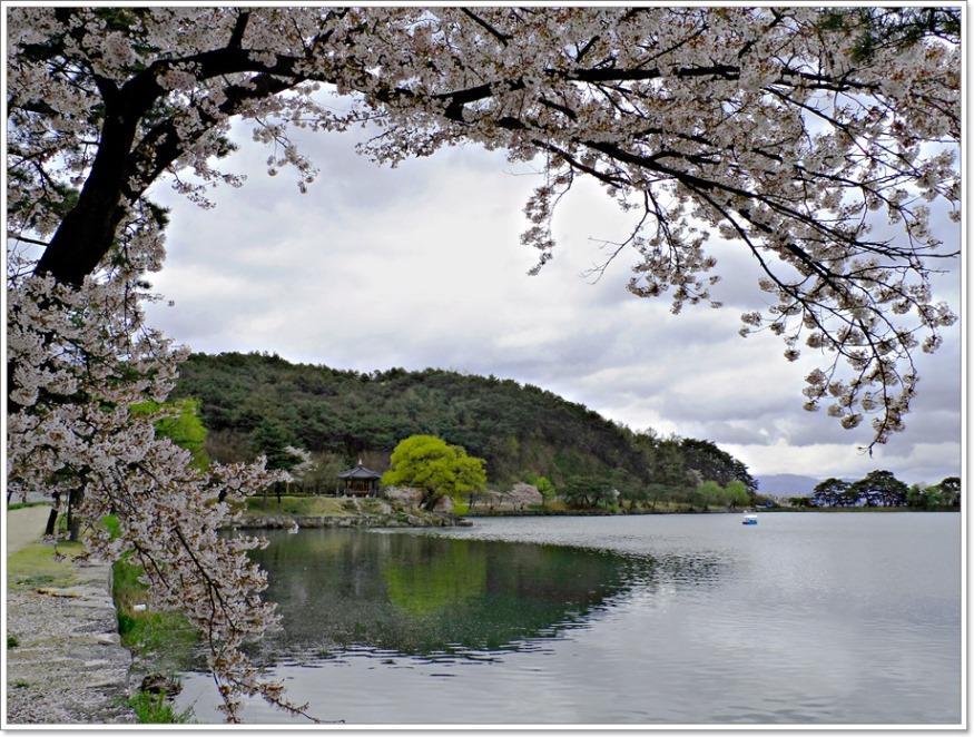 23. 이창기-의림지의 봄.jpg